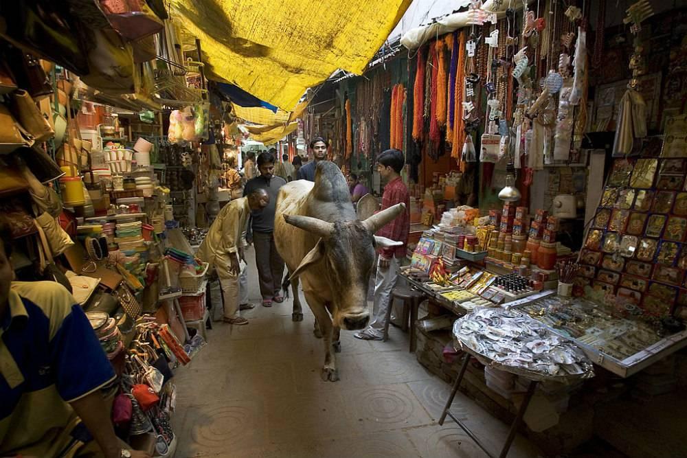 The-streets-of-Varanasi